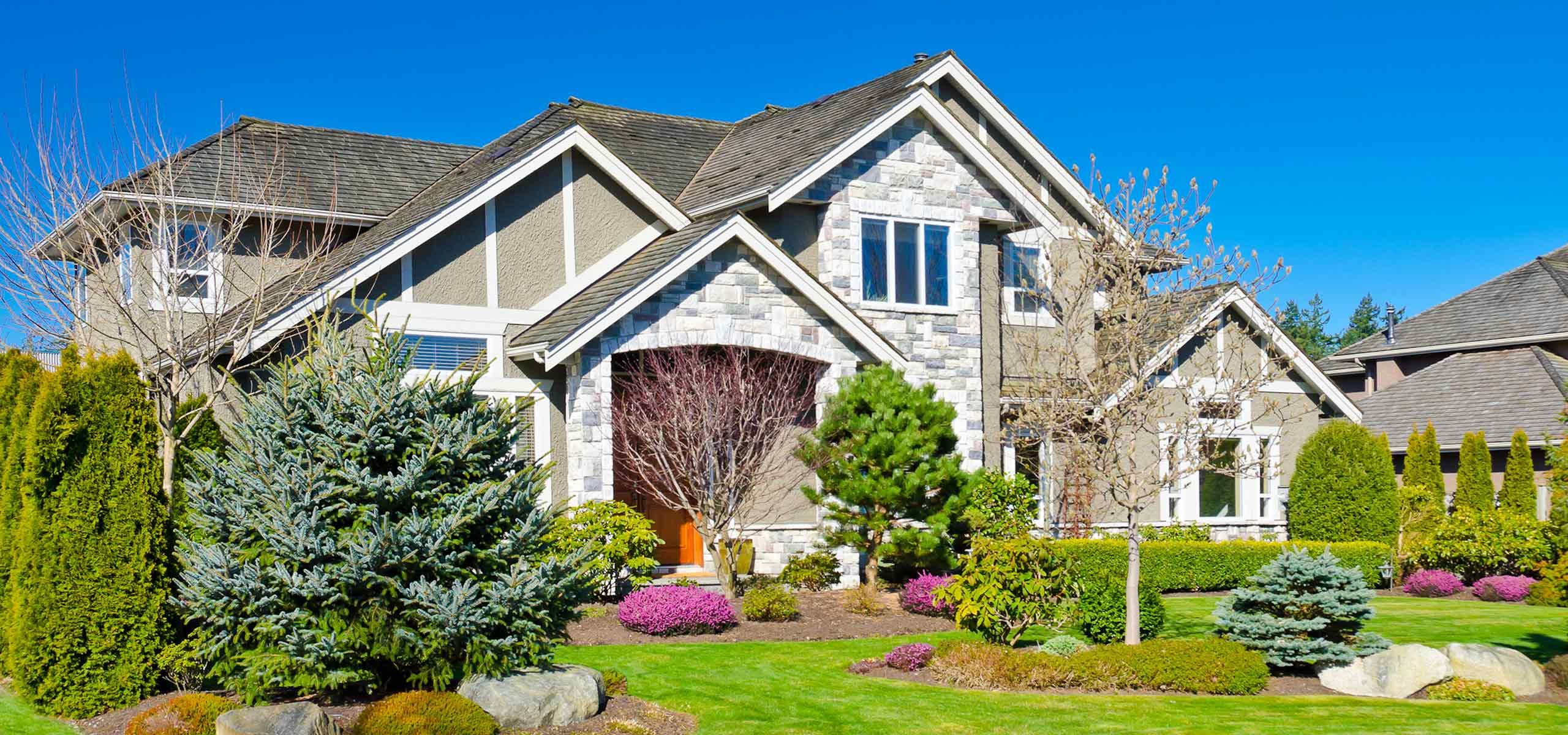 Termite Warranty New Homeowner Registration | Black Pest Prevention